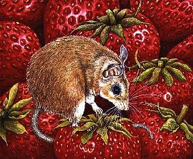 Strawberry-Mouse, 1995 (acrylic on panel)
