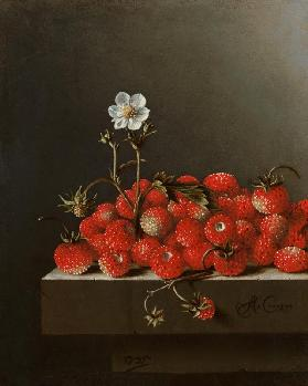 Still Life with Wild Strawberries