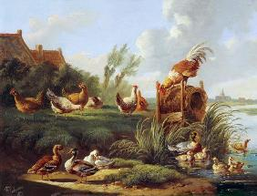 Ducks and Fowl on a Riverbank