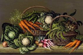 Basket of Vegetables and Radishes
