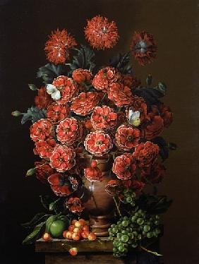 Poppies in a terracotta vase