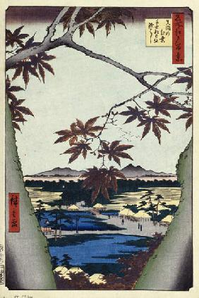 Maple Leaves and the Tekona Shrine and Bridge at Mama (One Hundred Famous Views of Edo)