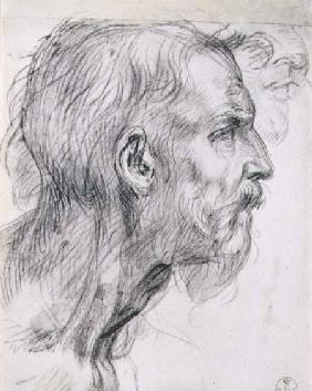 Head of an apostle, study for the fresco of the 'Last Supper' in the Convent of San Salvi, Florence