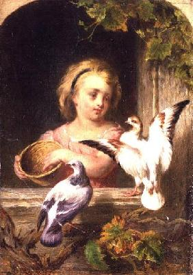 Girl Feeding Pigeons signed G.J.H.