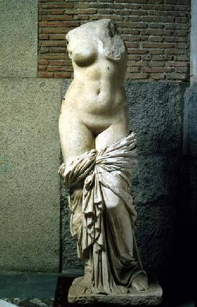 The Sinuessa Aphrodite