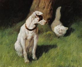 White Persian Cat and Jack Russell