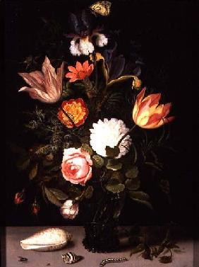Still Life of Flowers in a Roemer with Two Shells