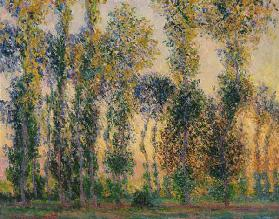 Poplars at Giverny, Sunrise