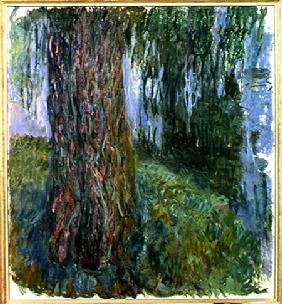 Weeping Willow and the Waterlily Pond