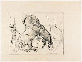 Study for Stallion and Jack Fighting