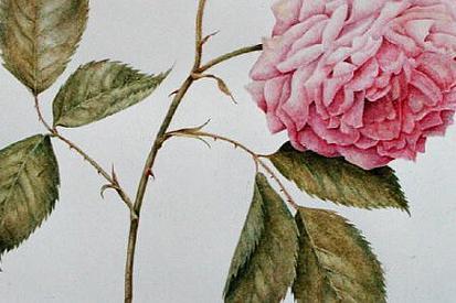 Arte Moderna Stampe Di Quadri E Riproduzioni Di Dipinti