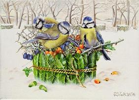 Blue Tits in Leaf Nest, 1996 (acrylic on canvas)
