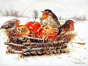 Robins with Apples, 1997 (acrylic on canvas)