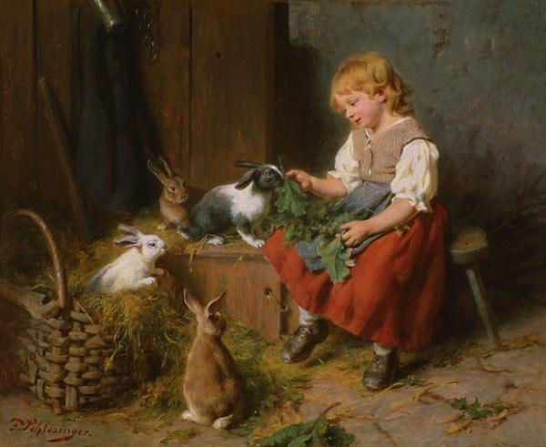 Rabbits feed