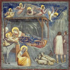 The Nativity / Giotto / c.1303/10