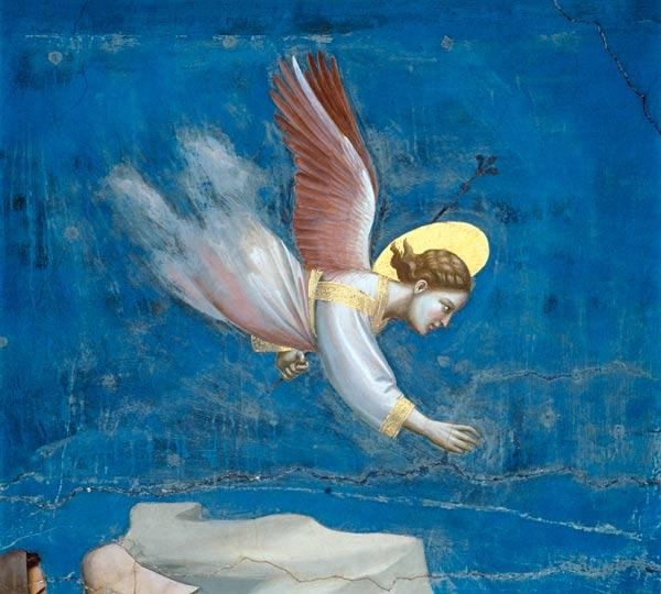 Giotto / Joachim''s dream / Detail