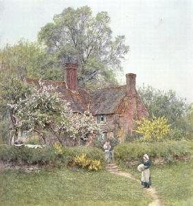 Cottage at Chiddingfold
