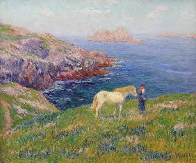 Farmer with horse at the coast of Ouessant.