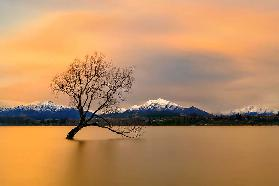 Morning glow of the Lake Wanaka