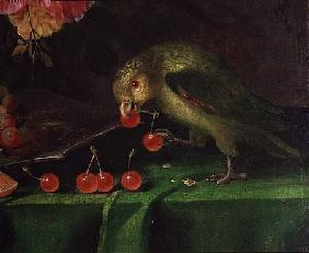 Still Life of Fruit and Flowers, detail of a Parrot