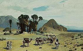 Camel caravan nearby the red sea.