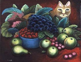 Cat and Fruit