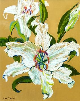 The white lilies
