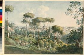 Look at Rome of the villa Melini.