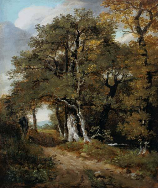 J.Constable, A Woodland Scene, c.1801.