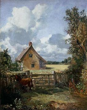 Cottage in a Cornfield