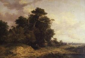 Landscape Scene in Norfolk
