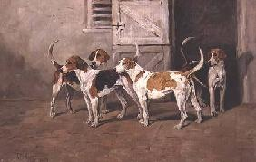 Four Hounds by a Stable Door