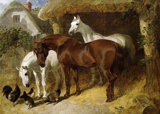 Cavalli e galline in una fattoria - quadro di John Frederick ...