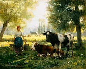 Milking girl with his cows