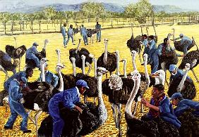 Ostrich Farm, 1988 (gouache on rice paper)