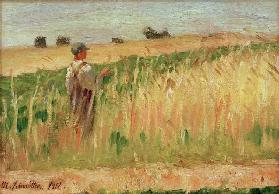 Untitled (Farmer in a Field of Wheat)