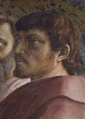Tribute Money (Head of an Apostle - detail of 31642) c.1427 (fresco)