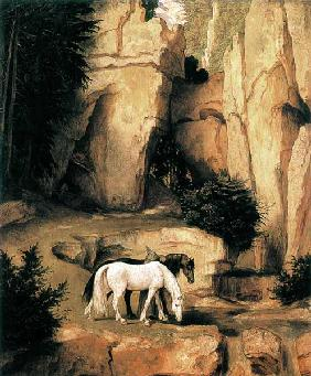 A hermit leads horse to the watering-place