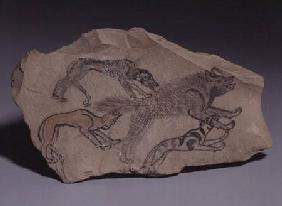 Ostracon depicting a dog chasing a hyena