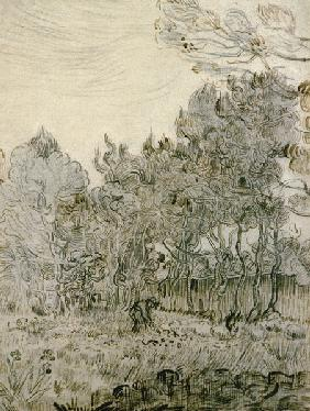 V.van Gogh, Garden of St Paul s Hospital