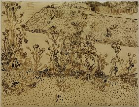 V.v.Gogh, Thistles along Roadside /Draw.