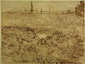 V.v.Gogh, Wheat Field / Drawing / 1888