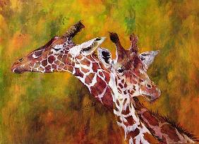 Giraffe, 1997 (acrylic and pencil crayon on paper)