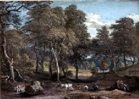 Windsor Forest with Oxen Drawing Timber