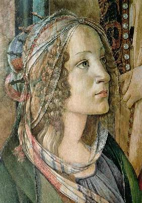 Detail of St. Catherine from the Altarpiece of San Barnaba