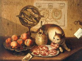 Still-life with cat