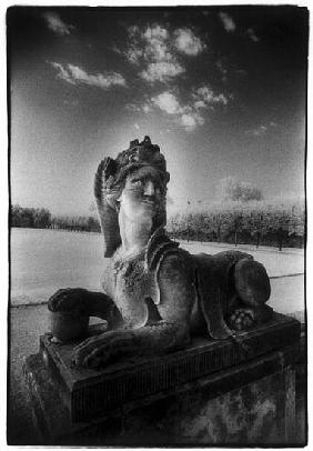 A Sphinx at Gross-Sedlitz, Heidenau