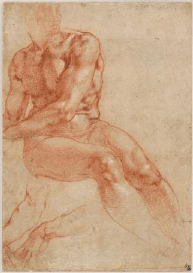 Seated Young Male Nude and Two Arm Studies