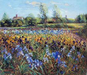 Irises and Burgate Green (oil on canvas)