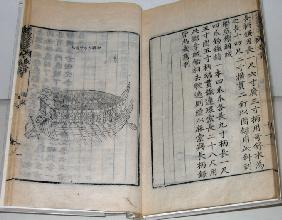 Turtle War Ship (Book Of Yi Sun-sin)